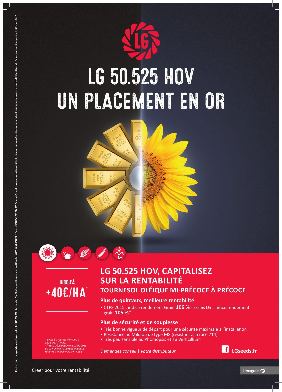 LG Tournesol lingot A4 HD-1